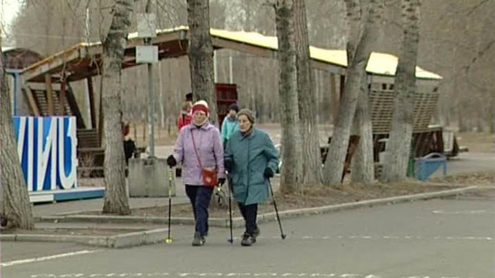 В Красноярске отметили потенциально опасные деревья