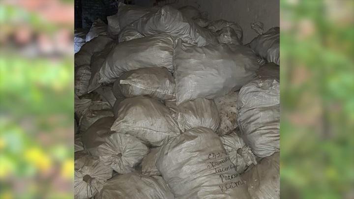 Под Калининградом нашли 300 мешков с человеческими останками