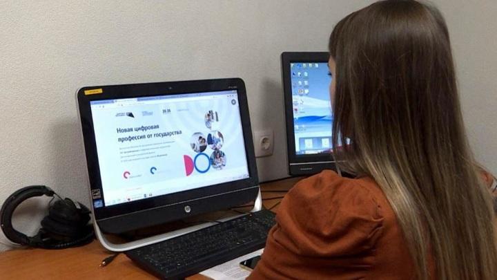 Северяне могут бесплатно пройти обучение в сфере IT-технологий