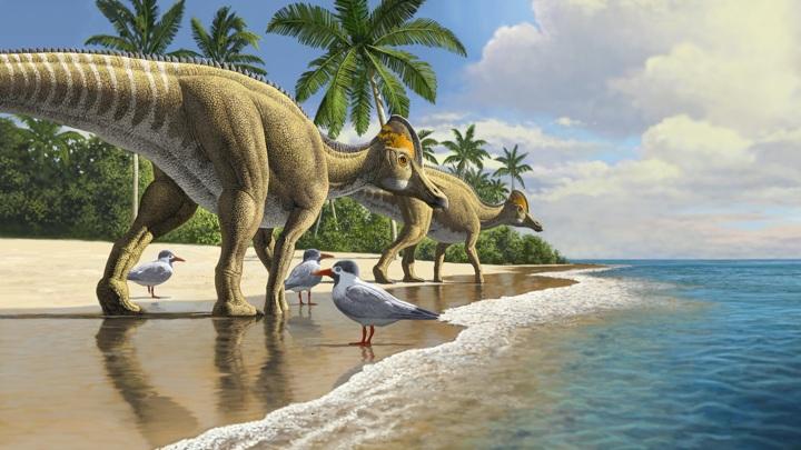 У гадрозаврид был единственный способ попасть в Африку: пересечь океан.