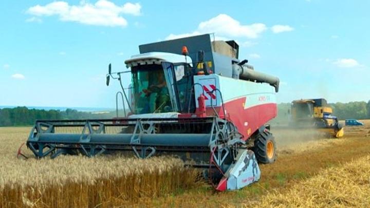 Правительство утвердило программу увеличения сельхозплощадей