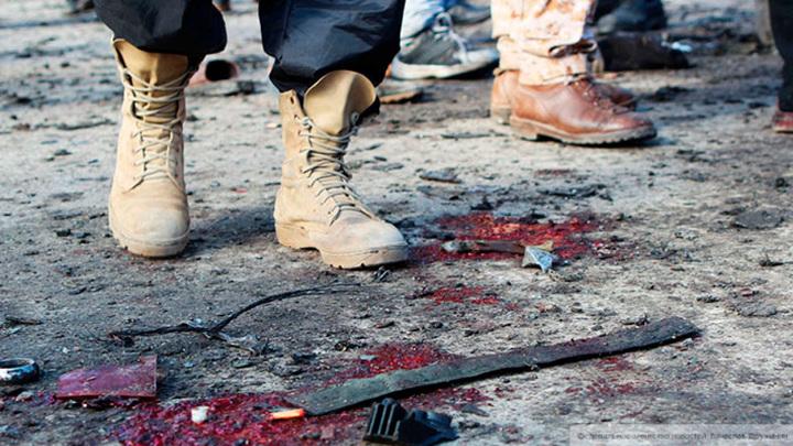На оружии, из которого убили иранского физика, найдены израильские логотипы