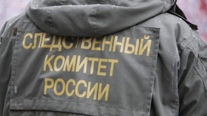 Молодой человек до смерти избил младшего брата в Подмосковье