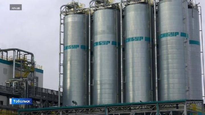 Путин посетит в Тобольске крупнейший нефтехимический комплекс страны