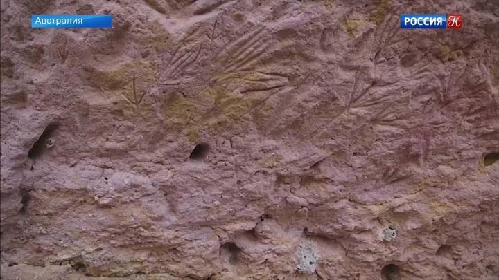 Древние наскальные рисунки открыли для туристов в Австралии