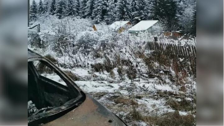 У погибшей в Волоколамске семьи был конфликт с соседом из-за лошадей