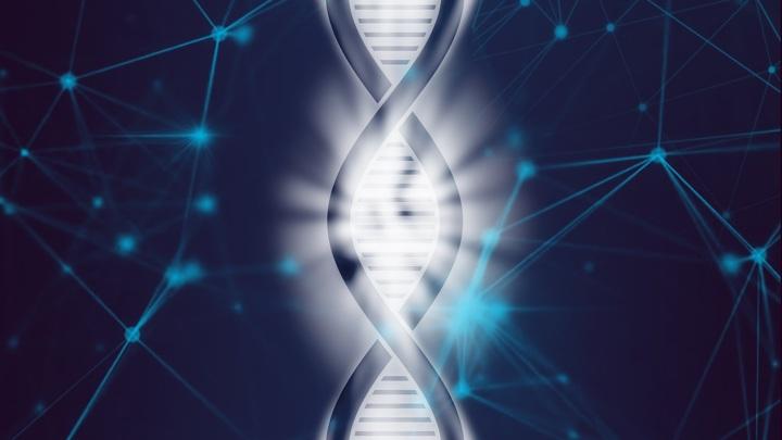 Новое приложение позволяет анализировать ДНК на обычном смартфоне.