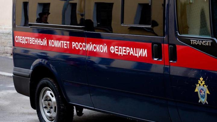 Под Санкт-Петербургом в мусорном контейнере обнаружили зарезанного мужчину