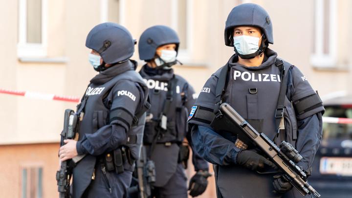 Разгон по Фрейду: венская полиция применила газ против антифашистов