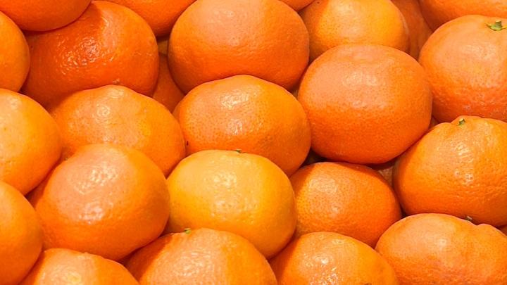 Россия запретила ввоз из Турции мандаринов с пестицидами