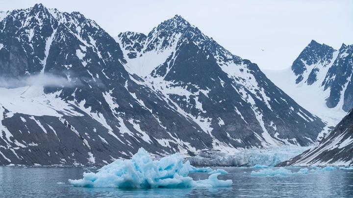Планы России на Арктику охарактеризовали фразой из мультика