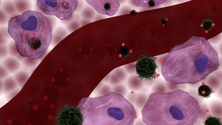 Наночастицы внедряются в раковые клетки, чтобы нанести по ним двойной удар.
