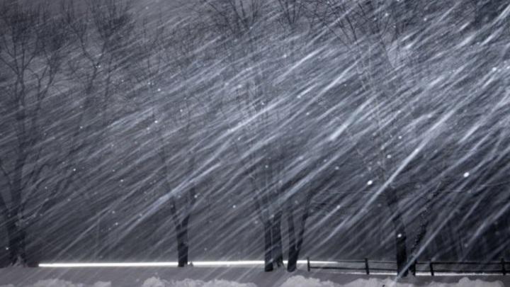 Зима вернулась: суровая стихия накрывает Северный Кавказ