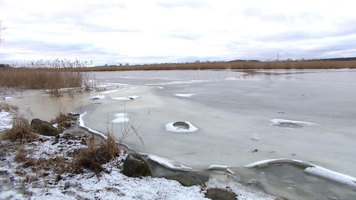 Калининградец спас провалившегося под лед школьника