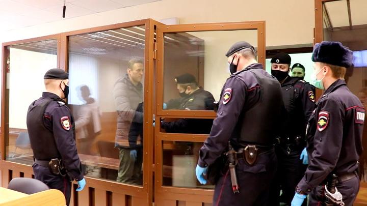 Ремесло против Навального: подробности дела о клевете
