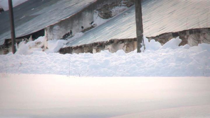 Трагедия на Алтае: семьи погибших получат компенсации