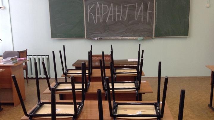 Российские регионы смягчают карантин