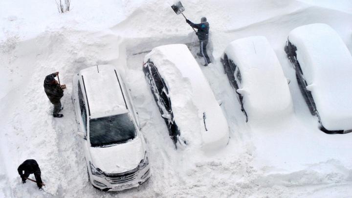 Национальный автосоюз: откапывать автомобили надо сразу же после выпадения снега