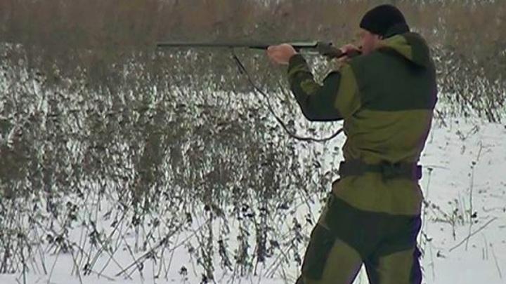 В Калужской области определили параметры охоты на птиц