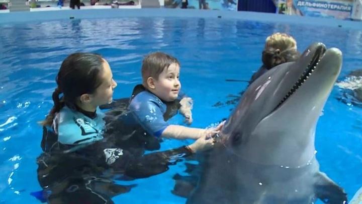 Плавать с дельфинами: губернатор исполнил мечту юного ямальца