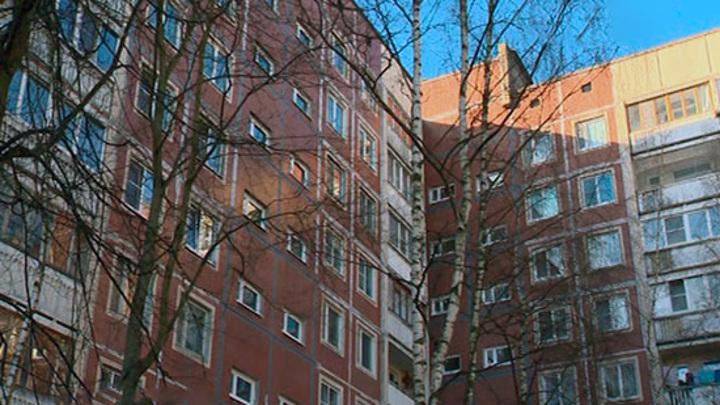 Убийство или трагедия: СК разбирается в деталях страшной находки в Ленобласти