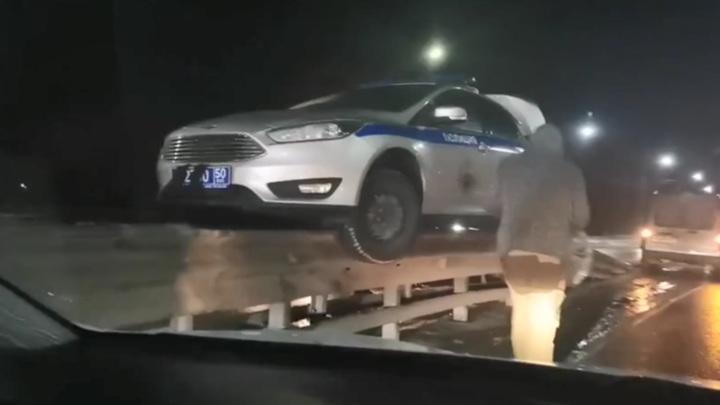 В Подмосковье полицейский автомобиль завис на отбойнике