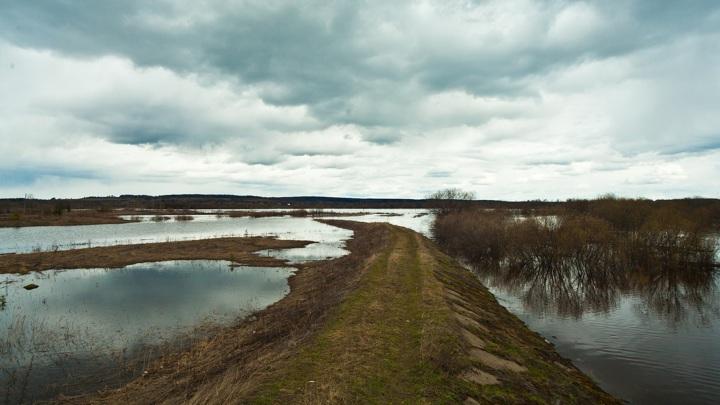 """В Туле готовятся к """"плохому сценарию"""" паводка"""