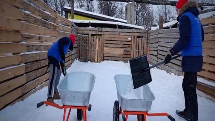 Приюту бездомных животных помогли красноярские школьники