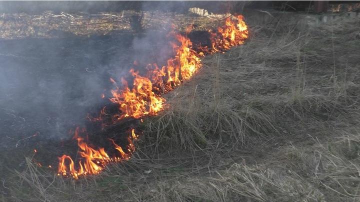 В Чувашии за пал травы фермеров оставят без субсидий