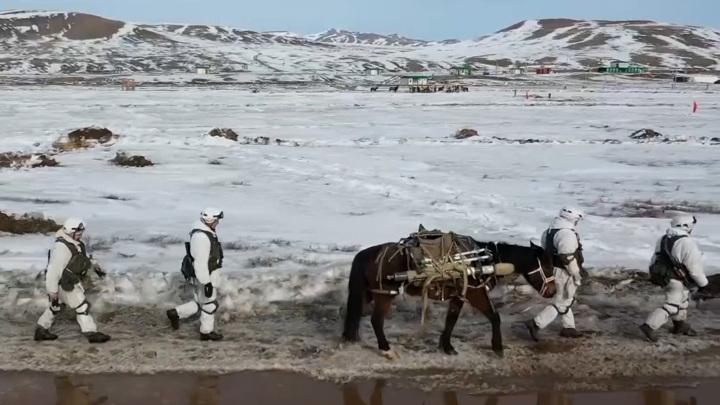 Военные перебросили на лошадях две тонны оружия. Видео