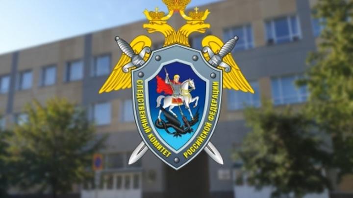 """Директор ульяновской фирмы построил для детей-сирот """"карточный дом"""""""