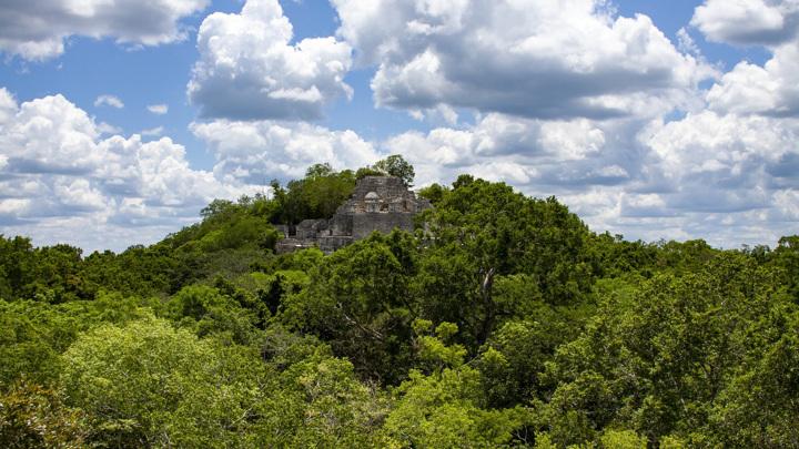 Руины древнего города майя Калакмуль.