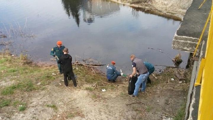 На реке Волхов обнаружено нефтяное пятно