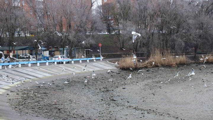 Северное водохранилище Ростова после аварии планируют начать заполнять водой вечером 26 марта