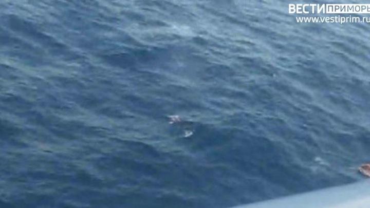 ЧП на судне в Охотском море: следователи начали проверку