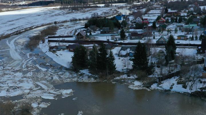 Паводок наступает: на окраине Вологды затапливает дачные поселки
