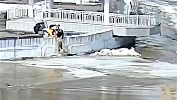 Челябинские подростки спасли собаку, оказавшуюся на льдине