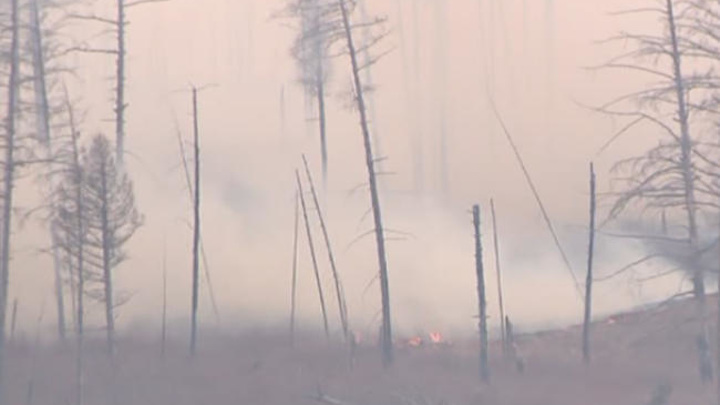 В трех километрах от забайкальского села ликвидирован крупный лесной пожар