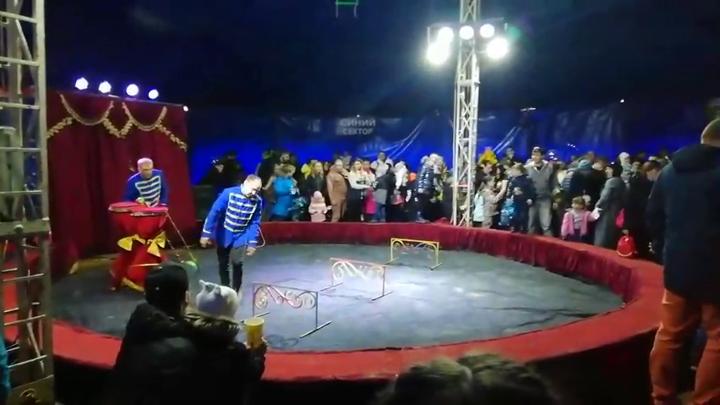Зрительские сиденья сложились, как карточный домик в передвижном цирке в Кировске