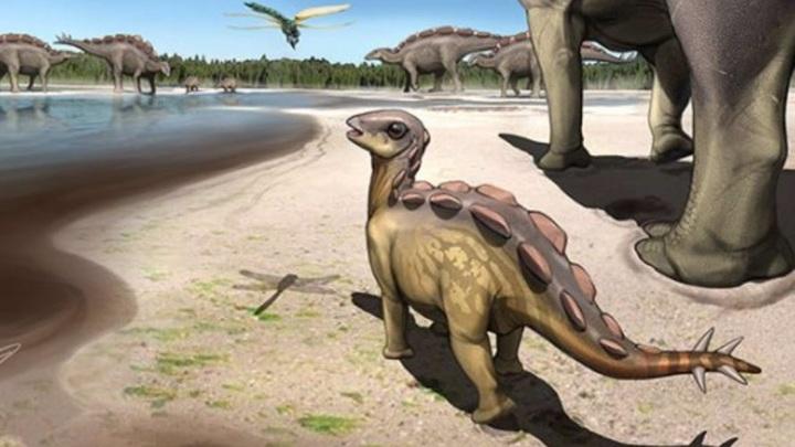 Реконструкция облика крошечного динозавра.