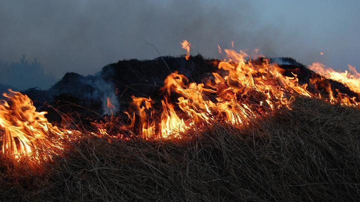 В Нижегородской области 12 домов загорелись из-за пала сухой травы
