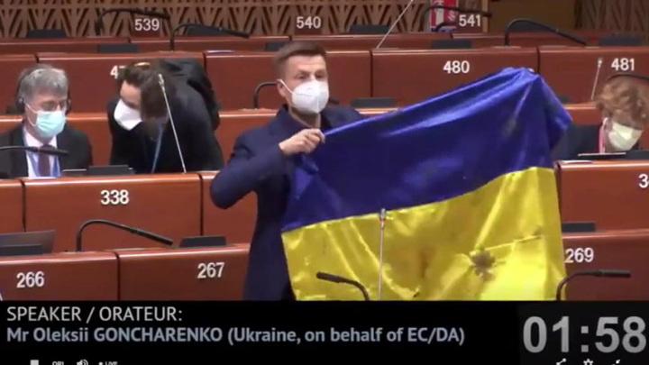 Украинскому депутату отключили микрофон в ПАСЕ под аплодисменты