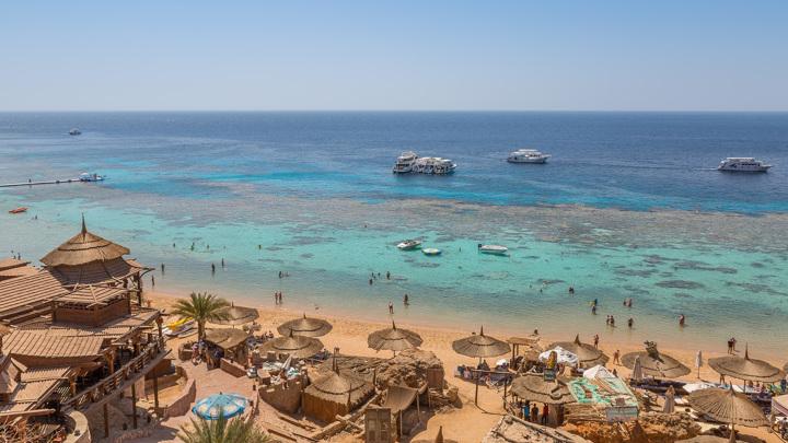 Посольство Египта подтвердило готовность к открытию авиасообщения