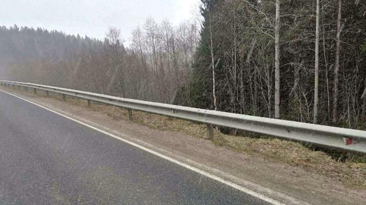 На дорогах Поморья неизвестные похищали стойки барьерного ограждения