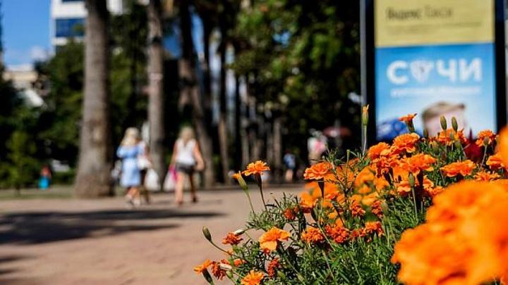 В Сочи в мае уже отдохнули 232 тысячи туристов