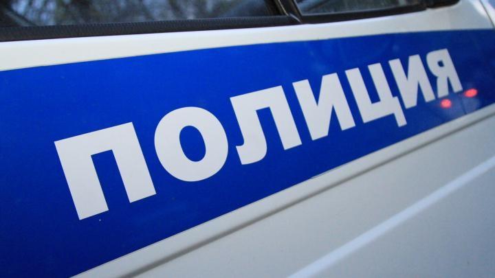 В Пензе арестовали похитительницу телевизоров