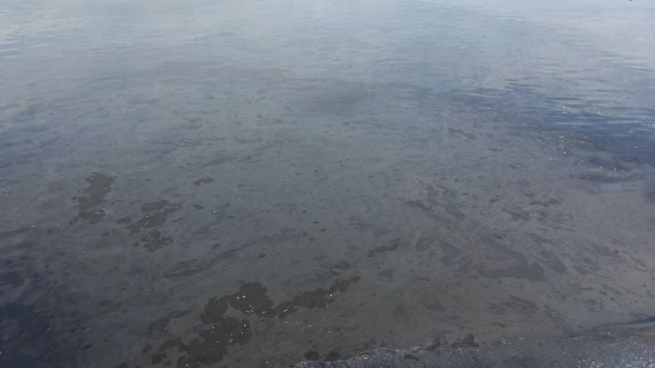 В Ярославле проведут проверку по сообщению о нефтяной пленке на Волге