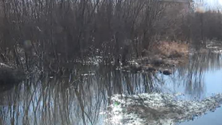 В Забайкалье реки вблизи населенных пунктов могут выйти из берегов