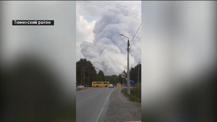 В Тюмени эвакуировали несколько учреждений из-за лесных пожаров