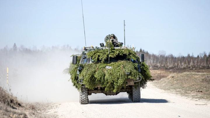 Фото: Силы самообороны Эстонии